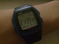 My New $24 watch. It's not beatuiful, but very useful: dual timezone, alarm clock, stopwatch and background light