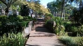 Park Surroundings